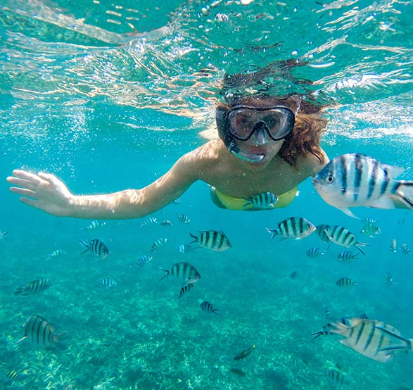 snorkeling-at-cabo-pulmo-of-mexico-th